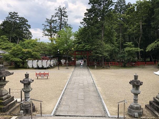 春日神がお祀りされる社殿と社殿からの雰囲気