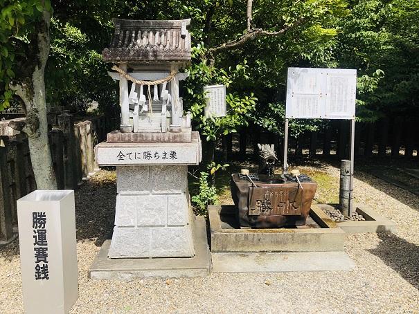 乃木神社「勝水」