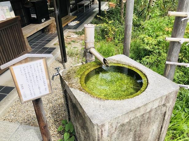 名水の染井の水で占う水みくじ。梨木神社