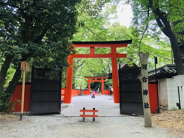 スタート地点に鎮座する女性のパワースポット「河合神社」