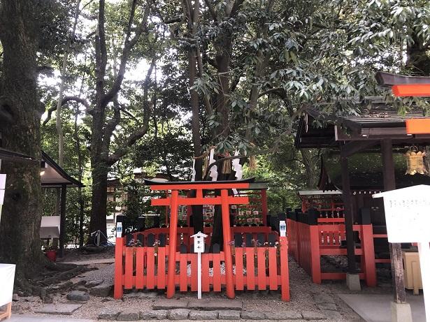 二本の木が一本になった「御神木」下鴨神社