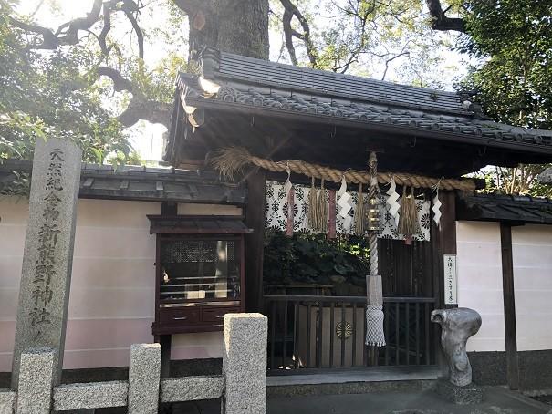 新熊野神社 さすり木