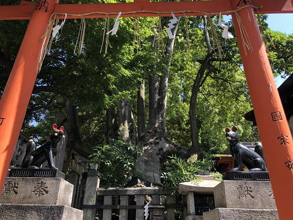 満足稲荷神社 コン吉(左)ツネ松(右)