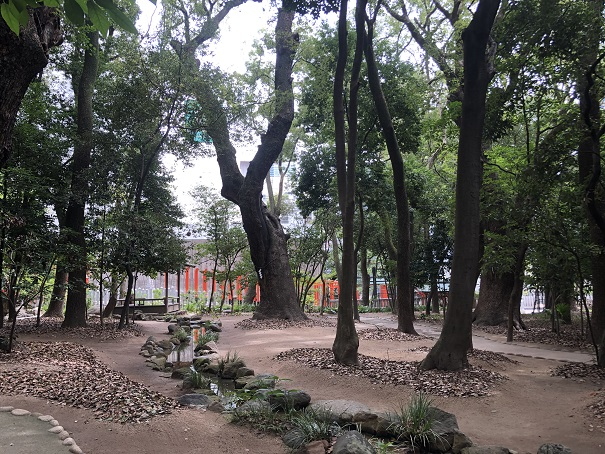 生田神社 生田の森