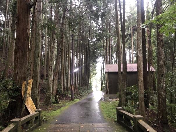 江文神社の境内の雰囲気