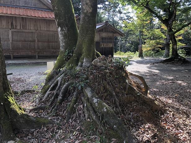 朝山神社の境内の雰囲気