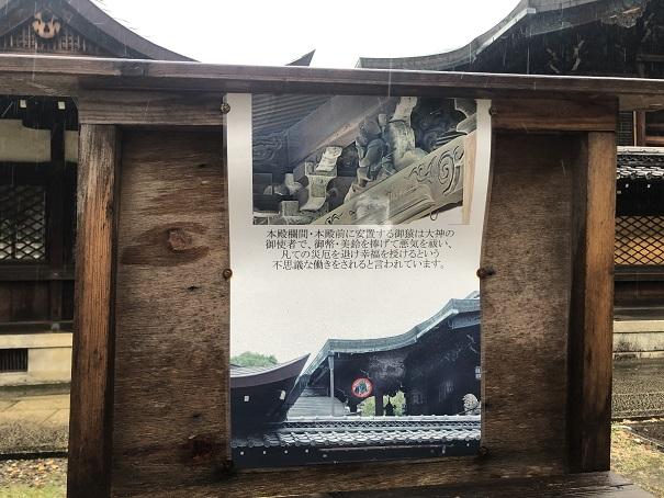 日吉を守る神使い神猿(まさる)新日吉神宮